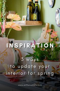 Looking for Spring decor ideas for your home? Changing only a few designs, adding a few things here and there can make a huge difference already. In this article we'll share 3 easy and inexpensive ways to give your interior an update. #house #2021 #anthurium Spring Plants, Spring Blooms, Perfect Plants, Large Plants, Spring Is Here, Cut Flowers, Do Anything, Home Decor Items, Plant Hanger