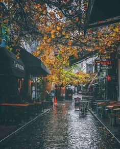 Autumn is here.again - Benchbags Autumn is here. Beautiful Streets, Beautiful Places, Beautiful Pictures, Rain Photography, Autumn Photography, Photography Editing, Forest Theme Bedrooms, I Love Rain, Autumn Rain