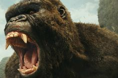 """""""Kong: Skull Island"""" is a skillful old-school creature feature starring Tom Hiddleston, Brie Larson and Samuel L. Jackson"""
