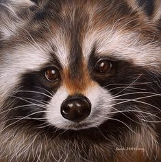 Sarah Stribbling Wildlife Art   Gallery