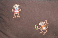 Close up on the monkeys