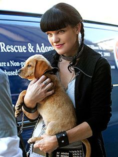 The article is so sweet how Pauley Perrette takes care of her animals