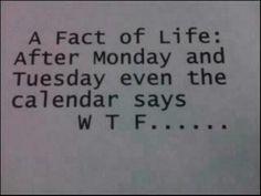 True true :P