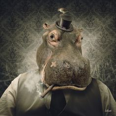 House Hippo, Animal Faces, Art Graphique, Ancient Civilizations, Fantasy Creatures, Mammals, Illustration, Creepy, Digital Art