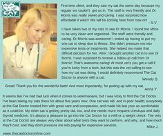 Reviews from clients of The Cat Doctor www.thecatdoctoronline.com