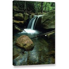 ArtWall Kathy Yates Waterfall In The Woods Gallery-Wrapped Canvas, Size: 12 x 18, Green
