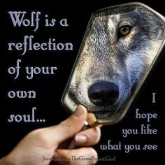 Sometimes I see the wolf in me, sometimes she hides...afraid of the world…