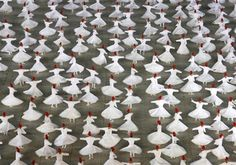 dervishes above - Google Search World Photo, Book Publishing, Crowd, Around The Worlds, Display, Amazing, Image, Trees, Science