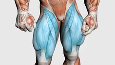 Natural bodybuilder Brad Borland presents a 10 part muscle building super series. Part 6 focuses on building the quads, and includes quads anatomy, exercises and workouts for every need.