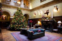 Christmas time in the saloon at Stapleford Park