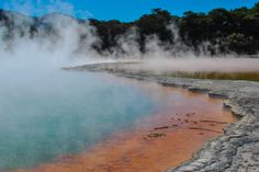 Thermal Pools in New Zealand [OC] 3872x2592