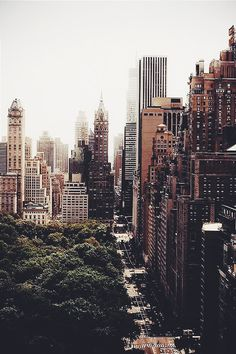 NEW YORK CITY NYC / central park / city / skyscrapers / explore / wander / travel / wanderlust / big apple / concrete jungle Oh The Places You'll Go, Places To Travel, Places To Visit, Concrete Jungle, Photographie New York, Magic Places, Voyage New York, City Aesthetic, Travel Aesthetic