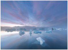 ice lagoon, iceland ıan plant