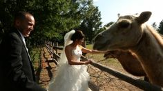 A wedding with Camels?  ohh..a wedding in a botanical garden and zoo.  Much cooler!  One word captures this day…GORGEOUS!!! The day, the location and the couple, all gorgeous. This amazing venue, El Rancho Exotica in Kansas looked right out of a story book. You'll definitely want to see this!  Kansas Wedding | wedding video | wedding film www.luminanceweddingfilms.com