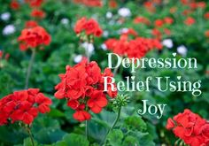 My 15 year journey with chronic depression has an amazing ending!    TheConfidentMom.com