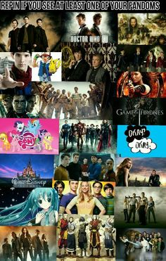 Supernatural, Doctor Who, Merlin, Sherlock, MLP, Avatar:TLA and LOK, TBBT, Disney (only scratching the surface)