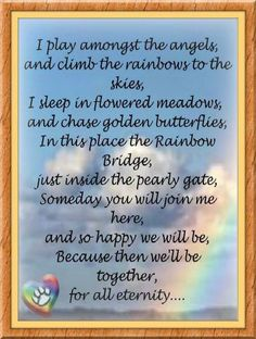 Until we meet again ♥ To all of us who lost on of our best 4 legged friends.
