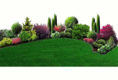 Ogród okręgów (nr1)   Kemu.pl pracownia projektowania krajobrazu