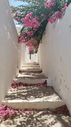 Tstories greece breeze island life patmos