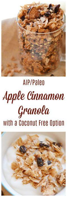Apple Cinnamon Granola (AIP/Paleo) | Lichen Paleo, Loving AIP