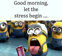 Today Minion quotes funny (05:03:23 PM, Monday 15, February 2016 PST) – 10 pics