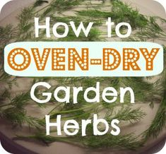 How to oven dry your fresh garden herbs.