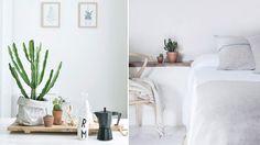 13 tips: Så inreder du med trendiga kaktusen