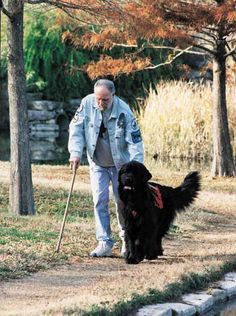An article in the Newfoundland Club of America about Dick Shumer and his Newfoundland Service Dog Buddy.