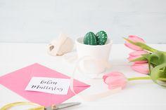 Mini Kaktus zum Muttertag