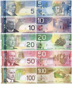 This is the page of currency images that lists the information of major currencies including currency names, codes and flags. You can click the 'currency name' to view corresponding currency images. Canadian Coins, Canadian Dollar, Canadian History, Dollar Coin, Printable Play Money, Money Worksheets, Money Notes, Coins Worth Money, Warriors