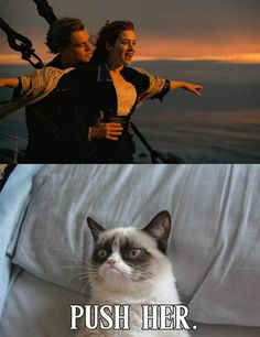 i love Titanic, but this may be one of the BEST Grumpy Cat quotes I've seen