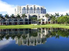What a beautiful campus we have! Nice pic of the Green Library, courtesy of panoramio.com.