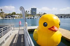 This adorable rubber duck will be at Oceanside Harbor Days 2015 on Sept 26 & 27
