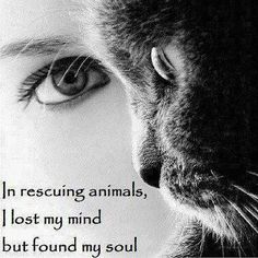 Found my soul