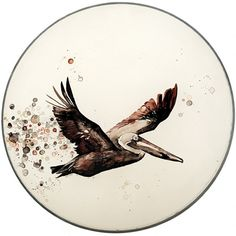 Aimee van Drimmelen's paintings on drumskins. Beautiful.