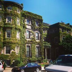 More east coast!! I  Boston #bostonuniversity #bu #ivy #brownstone #beantown by bguad