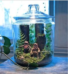 Make something amazing with the kids! Just in time for #starwars! http://positively-smitten.com/2014/08/11/diy-star-wars-terrarium/