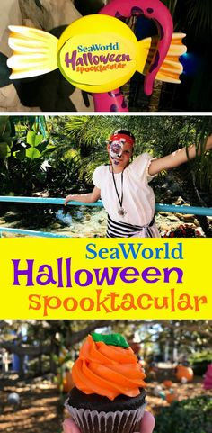 SeaWorld San Diego H