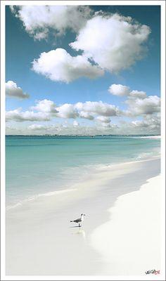 Para que soñar con las Seychells o Fiji si tenemos Los Roques?..Los Roques, Venezuela