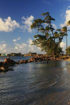 Isla de Cabras-Un pedacito de mi isla del encanto-Cataño www.combatebeach.com