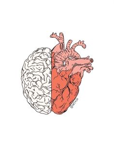 head or heart? Medical Wallpaper, Brain Art, Medical Art, Heart Art, Art Plastique, Cute Wallpapers, Art Inspo, Aesthetic Wallpapers, Cool Art