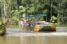 Rainforestation Nature Park - Cairns