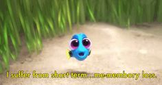 """6 Reasons We All Need To See """"Finding Dory"""""""