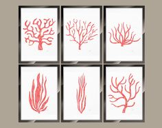 Set 6 Coral Prints, Rose Gold Nautical Print, Coral Illustration, Giclee Print, Wall Art Wall Décor, Wall Hanging Beach House Bathroom Décor