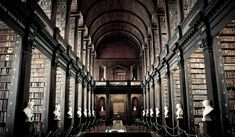 Dazzling libraries around the world   The Sneerkat Chronicles