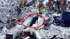 A Tribute To The Search And Rescue Dogs Of 9/11.