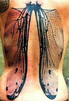 Dragonfly wings on back