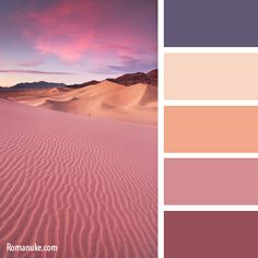 color-palette-763