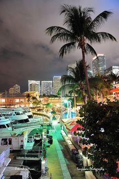 Bayside Marketplace, Downtown (Miami, Florida)
