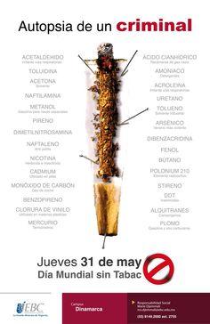 Día Mundial sin Tabaco en #CampusDinamarca